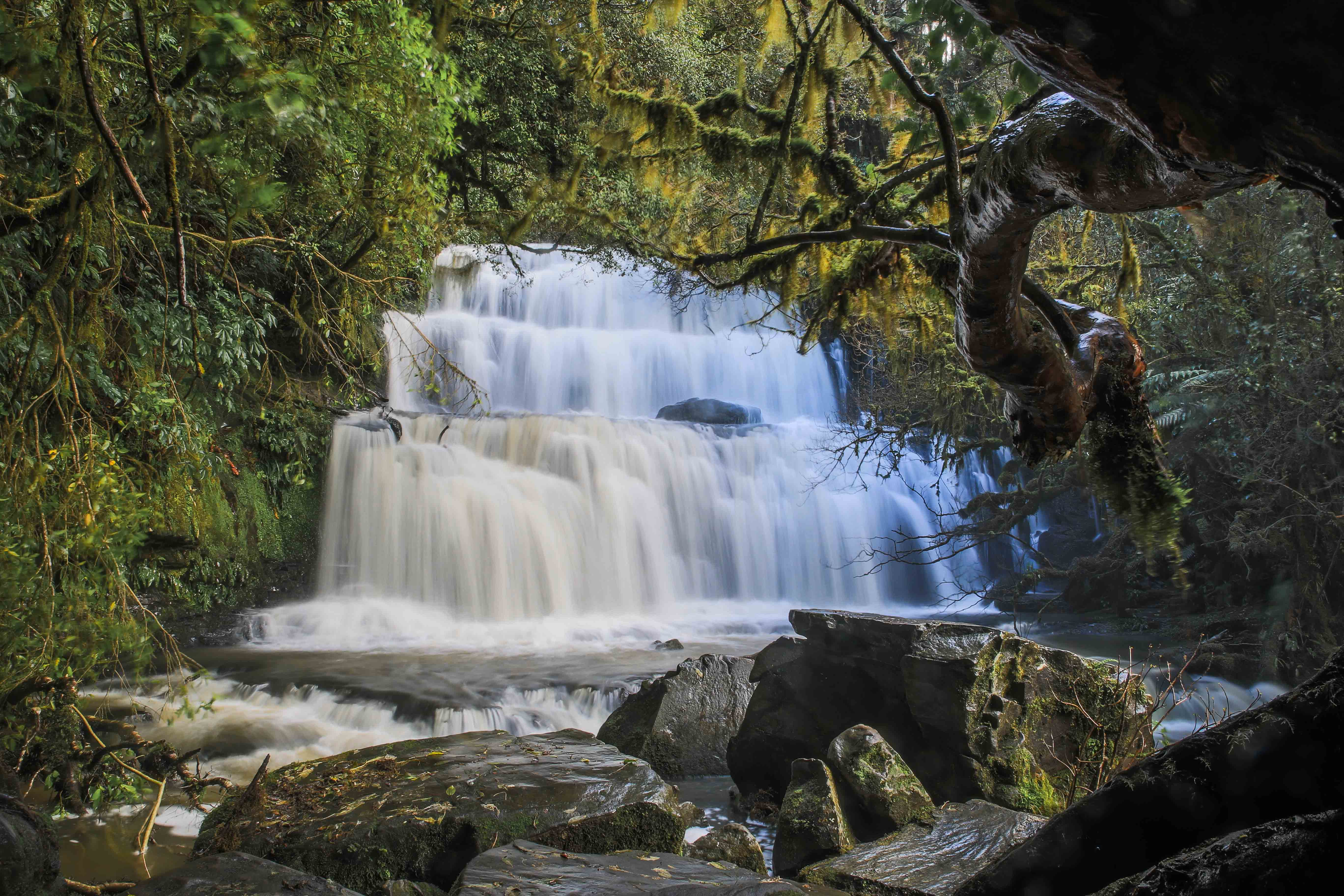 The Catlins Southern Scenic Route